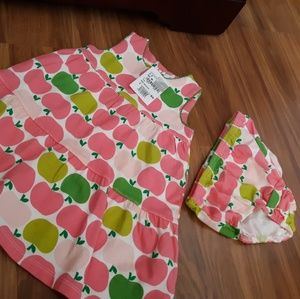 Nordstrom baby girl dress and panty 3-6 months